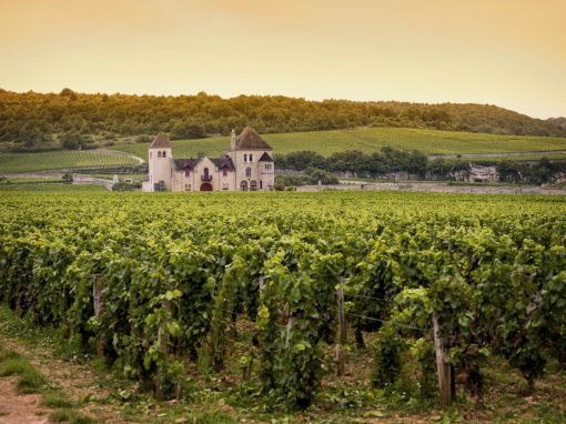 East, Taste and Hike in Franche Comte