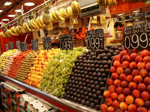Culture and Food Discovery in Spain